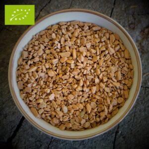 Kaneel - Cinnamomum zeylanicum