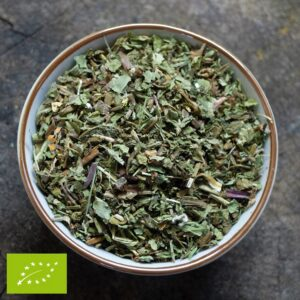 Paardenbloemblad - Taraxacum officinale