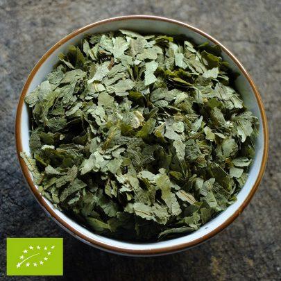 Daslook - Allium ursinum