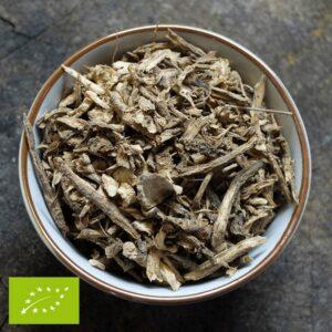 Alant wortel - Inula helenium