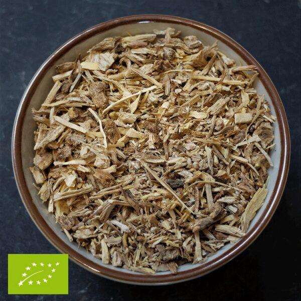 Engelwortel - Angelica Archangelica